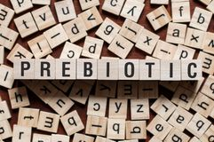 Prebiotic word concept stock images