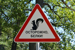 Precautionary sign Carefully, squirrels! in park.  Royalty Free Stock Image