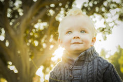 Precious Blonde Baby Boy Outdoors at the Park Stock Images