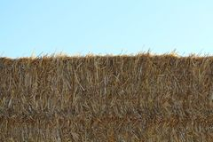 The precious image of a piece of straw ready to be stored royalty free stock image
