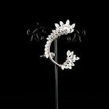Precious jewellery brooch Royalty Free Stock Photo