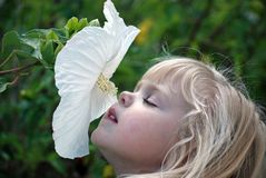 little girl smelling a hibiscus Stock Photo
