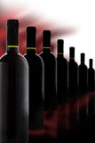 Precious Red Wine. Bottles of precious red wine in a row. Copyspace Royalty Free Stock Photos