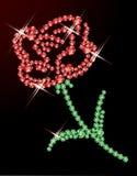 Precious rose. Royalty Free Stock Photos