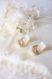 Precious wedding rings Stock Photos