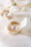 Precious wedding rings Royalty Free Stock Image