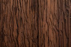 Precious wood texture. Of rustic aspect and dark, ocher, brown, toasted, black tones. The veins and knots are appreciated royalty free stock images