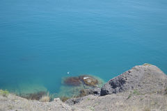 Precipice above a sea. Clean blue water, submarine stones and gull Royalty Free Stock Photography