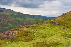 Precipice walk in Snowdonia Stock Photography