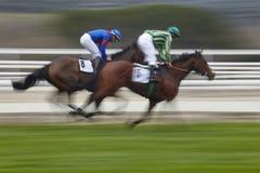 Precipitação final da corrida de cavalos Esporte da competição hippodrome vencedor Foto de Stock