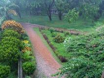 precipitación Foto de archivo libre de regalías
