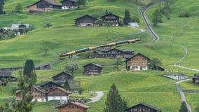 Precipitare preciso alpino attraverso la valle scenica in Svizzera Immagini Stock Libere da Diritti