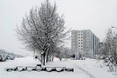 Precipitazioni nevose di inverno nella capitale del distretto di Pasilaiciai della città della Lituania Vilnius Fotografia Stock
