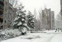 Precipitazioni nevose di inverno nella capitale del distretto di Seskine della città della Lituania Vilnius Fotografia Stock Libera da Diritti