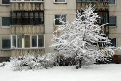 Precipitazioni nevose di inverno nella capitale del distretto di Seskine della città della Lituania Vilnius Fotografia Stock