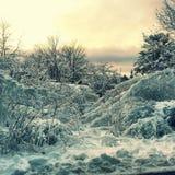 Precipitazioni nevose di mattina Fotografie Stock