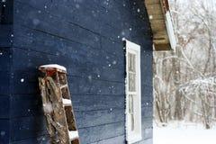 Precipitazioni nevose nel paese Fotografia Stock Libera da Diritti