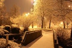 Precipitazioni nevose nel parco della città immagine stock