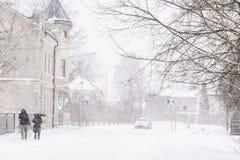 Precipitazioni nevose pesanti Immagini Stock Libere da Diritti