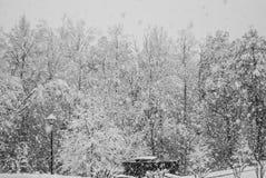 Precipitazioni nevose pesanti Fotografie Stock Libere da Diritti