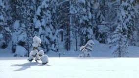 Precipitazioni nevose sull'orlo di una foresta alla luce solare della lampadina Ciclo senza cuciture video d archivio