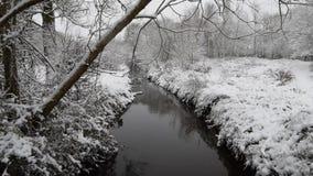 Precipitazioni nevose in un giorno nevoso pesante a Coventry, Regno Unito Parco naturale della piccola fattoria di Wyken coperto  stock footage
