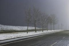 Precipitazioni nevose in via Fotografia Stock Libera da Diritti