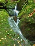 Precipiti a cascata sulla piccola torrente montano, l'acqua sta investendo i massi muscosi dell'arenaria e le bolle creano sull'ac Fotografia Stock