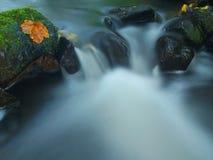 Precipiti a cascata sulla piccola torrente montano, l'acqua sta investendo i massi muscosi dell'arenaria e le bolle creano sull'a Fotografia Stock