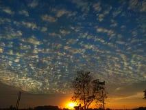 Precis en blå himmel på soluppgång arkivbild