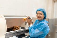 Precis f?dd valp i husdjursjukhus ?lsklings- sjukv?rdbegrepp royaltyfri foto