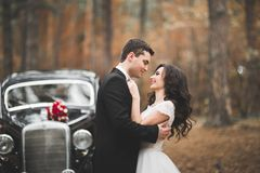 Precis gift par i den lyxiga retro bilen på deras bröllopdag royaltyfria bilder