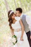 Precis gift par i naturbakgrund arkivbild