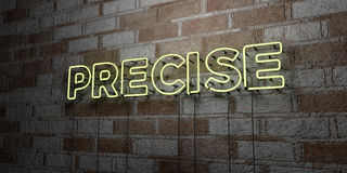 PRECISE - Glowing Neon Sign on stonework wall - 3D rendered royalty free stock illustration. Can be used for online banner ads and direct mailers Royalty Free Stock Image