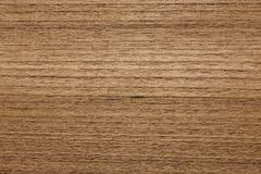 Precise veneer texture in your ideal brown tone. High resolution photo Stock Image