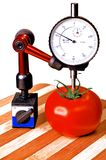 Precision  tomato. Sizing tomato with a dial gauge micrometer Stock Photo