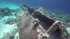 Precontinent由雅克Yves Cousteau修造 泡影,玻璃鱼,在红海苏丹珊瑚的阳光  库存例证