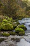 Predaselj river Kamniška bistrica Royalty Free Stock Image