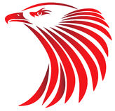 Predator. Illustration of a head eagle Vector Illustration