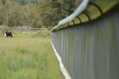 Predator fence at the Bois Gentil Kiwi Crèche, New Zeland. Greymouth, South Island, New Zealand, November 22, 2016: Predator fence at the Bois Gentil Kiwi Cr stock photography