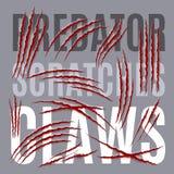 Predator Scratches Royalty Free Stock Photo