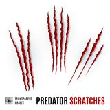 Predator Scratches Royalty Free Stock Image