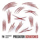 Predator Scratches Stock Image