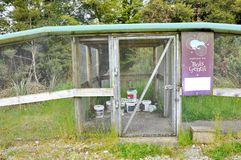 Predator trap at the Bois Gentil Kiwi Crèche, New Zeland. Greymouth, South Island, New Zealand, November 22, 2016: Predator trap at the Bois Gentil Kiwi Cr royalty free stock photography