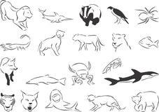 Predators Royalty Free Stock Image