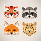Predatory animals Royalty Free Stock Image