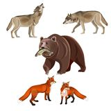 Predatory beasts vector royalty free illustration