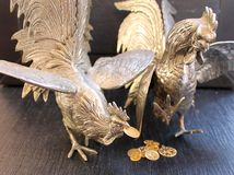 Predatory of bronze birds are fighting for money Royalty Free Stock Photography