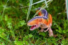 A predatory dinosaur with huge teeth in the jungle. A figurine o. A predatory dinosaur with huge teeth in the jungle royalty free stock photos
