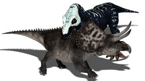 Predatory dinosaur Stock Photo